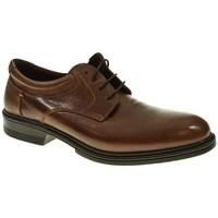 Sapatos Homem Sapatos Luisetti 30200 Marrón