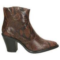 Sapatos Mulher Botins Stilmoda 9708 Marron