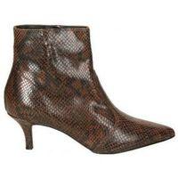 Sapatos Mulher Botins Stilmoda 9308 Marron