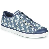 Sapatos Rapariga Sapatilhas Geox JR CIAK GIRL Azul / Branco