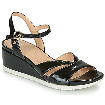 Sapatos Mulher Sandálias Geox D ISCHIA Preto