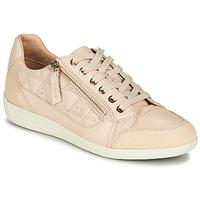 Sapatos Mulher Sapatilhas Geox D MYRIA Cru / Bege