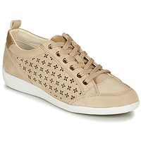 Sapatos Mulher Sapatilhas Geox D MYRIA Bege