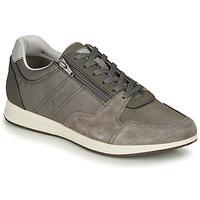Sapatos Homem Sapatilhas Geox U AVERY Cinza