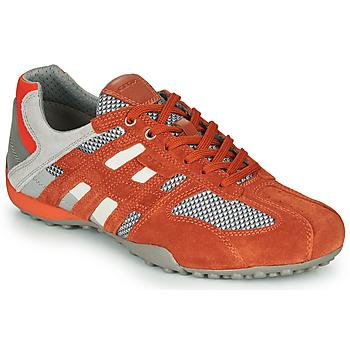 Sapatos Homem Sapatilhas Geox UOMO SNAKE Vermelho / Cinza