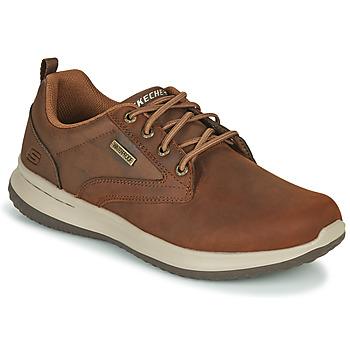 Sapatos Homem Sapatilhas Skechers DELSON ANTIGO Castanho