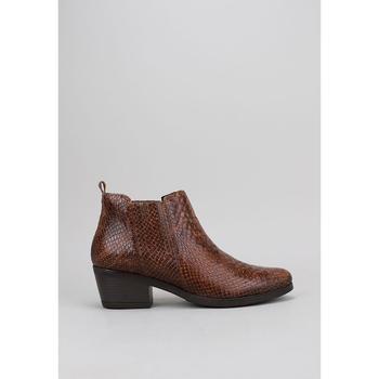 Sapatos Mulher Botas baixas Sandra Fontan BELEY Castanho