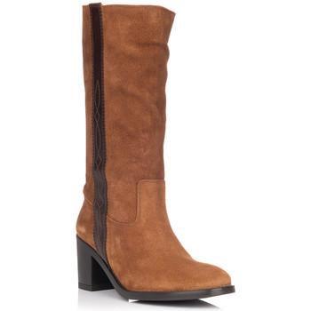 Sapatos Mulher Botas Zapp 9053 Castanho