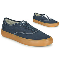 Sapatos Homem Sapatilhas Element PASSIPH Azul