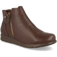 Sapatos Mulher Botins Clowse 9B1067 Marron