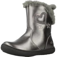 Sapatos Rapariga Botas de neve Chicco 1062651 Silver