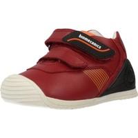 Sapatos Rapaz Sapatilhas Biomecanics 191159 Vermelho