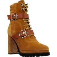 Sapatos Mulher Botins Elvio Zanon EK3601P Marron