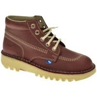 Sapatos Mulher Botas baixas Taum 100 Rojo