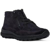 Sapatos Mulher Sapatilhas de cano-alto Ara VELOUR BLAU Blu
