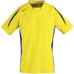 Textil Homem T-Shirt mangas curtas Sols MARACANA 2 SSL SPORT Amarillo