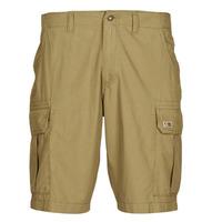 Textil Homem Shorts / Bermudas Napapijri NOTO 4 Camel