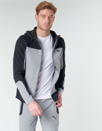 Textil Homem Sweats Puma EVOST HOOD Cinza
