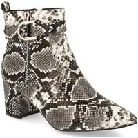 Sapatos Mulher Botins Encor D148 Gris