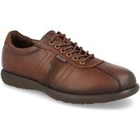 Sapatos Homem Sapatos V&d A918 Marron