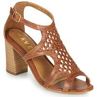 Sapatos Mulher Sandálias Ravel COREEN Camel