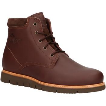 Sapatos Homem Botas baixas Panama Jack TYSON C7 Marr?n