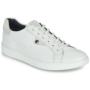 Sapatos Homem Sapatilhas Base London BUZZ Branco