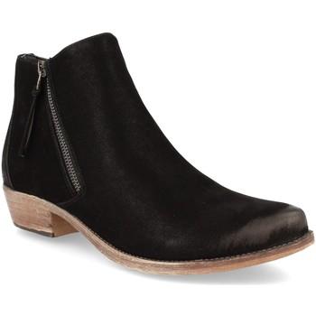 Sapatos Mulher Botins Kylie K1936305 Negro