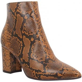 Sapatos Mulher Botins Impicci 126342 Castanho