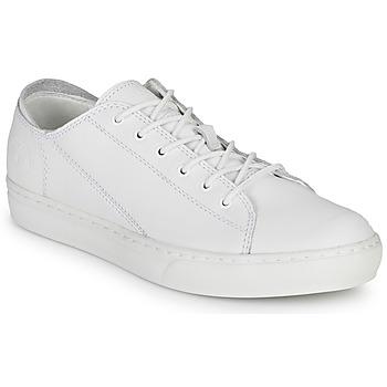 Sapatos Homem Sapatilhas Timberland ADV 2.0 CUPSOLE MODERN OX Branco