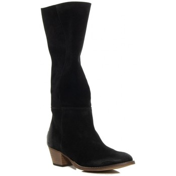 Sapatos Mulher Botas Troppa 2475 Negro