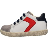 Sapatos Rapaz Sapatilhas Falcotto - Polacchino grigio/bco HYSO GRIGIO