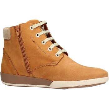 Sapatos Mulher Botas baixas Benvado - Moira cuoio 44006005 MARRONE