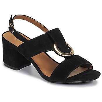 Sapatos Mulher Sandálias Moony Mood MANY Preto