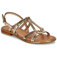 Sapatos Mulher Sandálias Les Tropéziennes par M Belarbi HACKLE Dourado