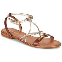 Sapatos Mulher Sandálias Les Tropéziennes par M Belarbi HIRONDEL Dourado