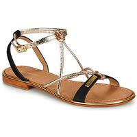 Sapatos Mulher Sandálias Les Tropéziennes par M Belarbi HIRONBUC Preto / Dourado