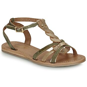 Sapatos Mulher Sandálias Les Tropéziennes par M Belarbi HAMUC Cáqui
