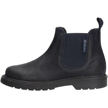 Sapatos Rapaz Botas baixas Naturino - Beatles blu PICCADILLY-0C01 BLU