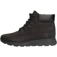 Sapatos Rapaz Botas baixas Timberland - Polacchino nero 0A19YC NERO