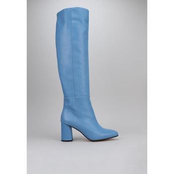 Sapatos Mulher Botas Roberto Torretta  Azul