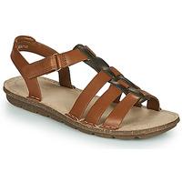 Sapatos Mulher Sandálias Clarks BLAKE JEWEL Camel