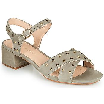 Sapatos Mulher Sandálias Clarks SHEER35 STRAP Toupeira