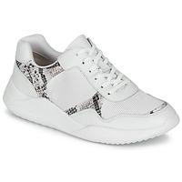 Sapatos Mulher Sapatilhas Clarks SIFT LACE Branco / Pitão