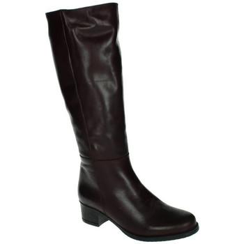 Sapatos Mulher Botas Lorena Massó  Violeta