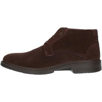 Sapatos Homem Botas baixas Luisetti 30206SE Castanho