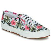 Sapatos Mulher Sapatilhas Superga 2750-COTUFANTASY Multicolor