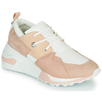 Sapatos Mulher Sapatilhas Steve Madden CLIFF Rosa