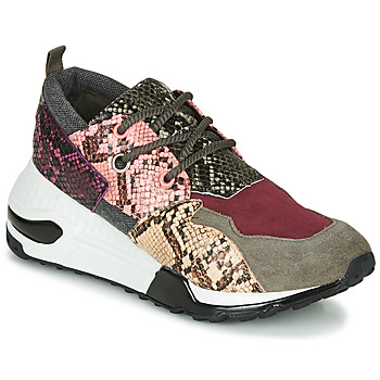 Sapatos Mulher Sapatilhas Steve Madden CLIFF Multicolor