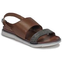 Sapatos Mulher Sandálias Mjus CATANA Castanho